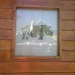 Rhino Africa - Vinyl applied to glass