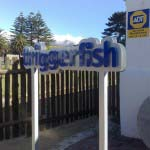 TRIGGERFISH - Aluminium cut letters mounted to aluminium backing