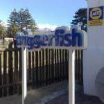 TRIGGERFISH - Aluminium cut letters mounted to aluminium backing
