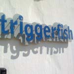 Triggerfish - Cut out Aluminium letters mounted to cut out aluminium backing
